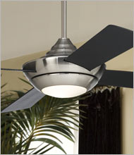 Contemporary Ceiling Fans