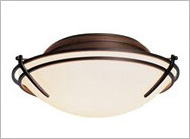 Energy Efficient Ceiling Lights