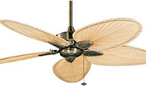 Fanimation Brass Ceiling Fans