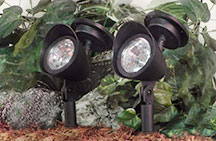 Solar Powered Landscape Lighting