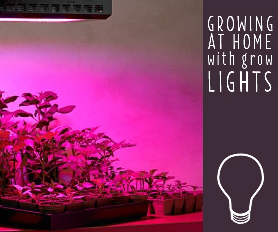 full articles indoor best grow spectrum growing lights lighting home led