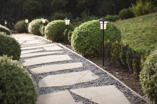 Path lights in an outdoor setting.