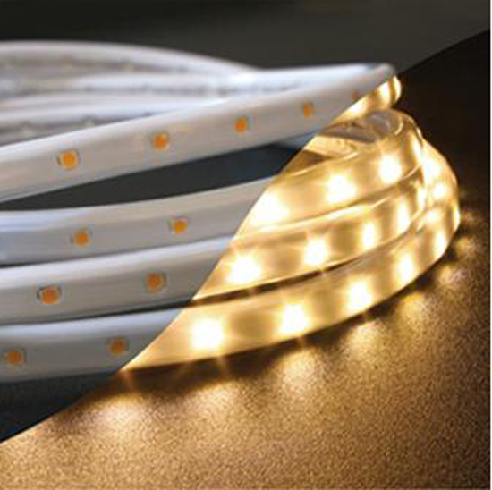 An LED rope light from Lamps Plus.