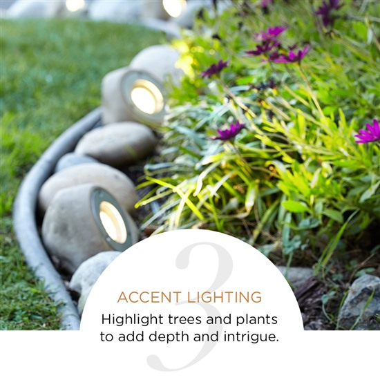 Uplights Accent Lighting Outdoors