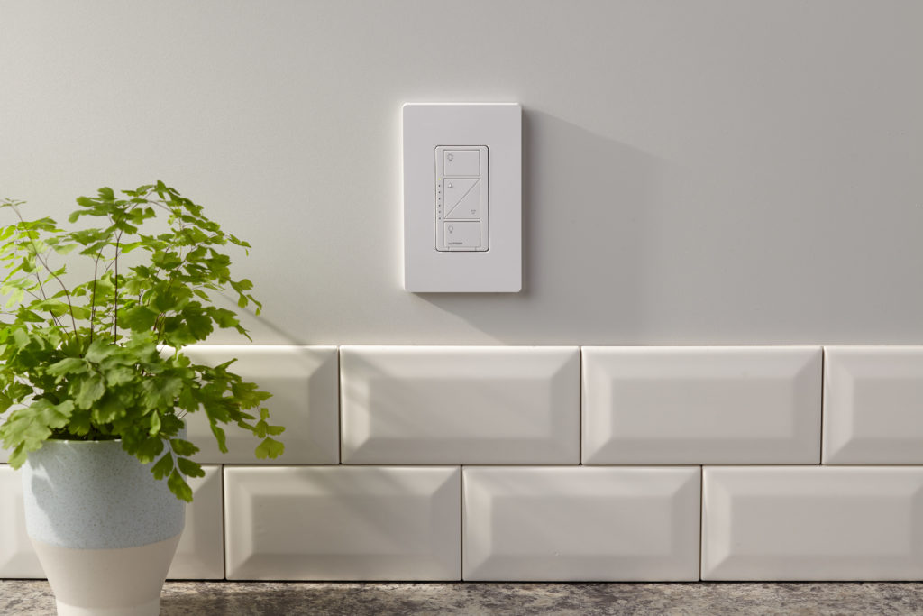 A white dimmer control on a white wall, next to a bi-color vase with a plant.