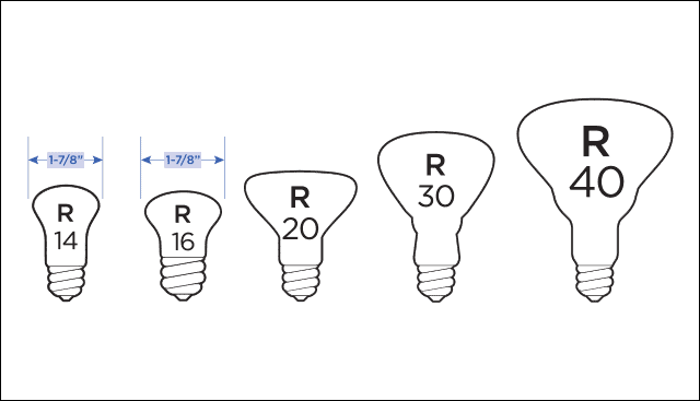 R Type Bulbs
